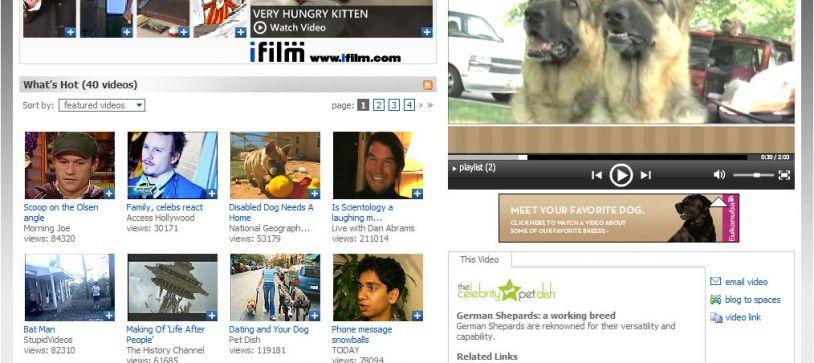 MSN Video UI and UX design